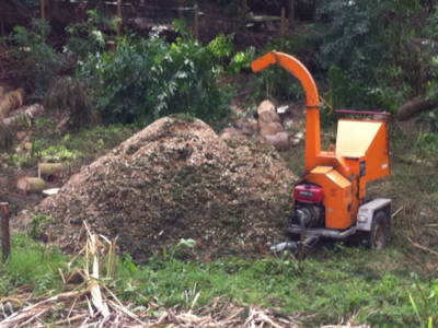BoomServiceRutten Bomen snoeien kappen vellen en advies boom 44